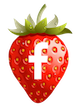 Strawberry Cottage on Facebook